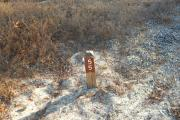 Campsite wood post with #55 metal sign surrounded by native grass.