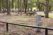 Shaded campsite with a fire ring and picnic table surrounded by beautiful oak trees and pine trees.