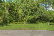 Grass filled campsite next to an asphalt road with a picnic table, surrounded by lush vegetation.
