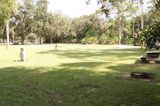 Grass filled campsite with a picnic table and fire ring, surrounded by trees and shrubbery.