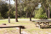 Sunny campsite with a picnic table and fire ring, all in partial shade from an oak tree.