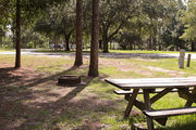 Large, sunny, pull through campsite with a picnic table and fire ring.