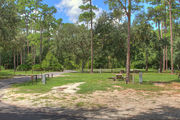 Large, sunny, pull through campsite with a picnic table and asphalt road in the background.