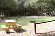 Sunny campsite with a picnic table and fire ring.