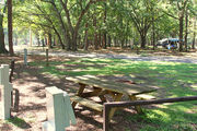 Shaded campsite with a picnic table, located in the middle of the campground.
