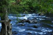 This state park is divided by the swiftly flowing Hillsborough River with a set of Class II rapids