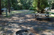 View of shaded campsite.