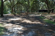 Partially view of shaded campsite.