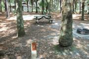 Primitive campsite with sand pad, picnic table and ground grill.