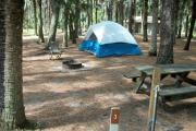 Primitive campsite with water spigot, sand pad, picnic table and ground grill. A blue tent and lawn chair are in the site, not included.