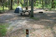 Primitive campsite with picnic table and ground grill. A blue tent and lawn chair are in the site, not included.