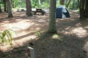 Primitive campsite with picnic table and ground grill. A blue tent is in the site, not included.
