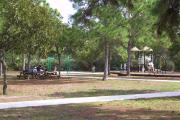 Photo: JONATHAN DICKINSON SP. A wide view of the picnic area at Jonathan Dickinson State Park shows people picnicking under large trees, picnic tables and grills and a children's playground.