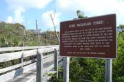 Photo: JONATHAN DICKINSON SP. The boardwalk leading up to the Hobe Mountain Observation Tower is shown, climbing several sets of stairs through scrub vegetation. Next to the boardwalk is a large sign explaining the natural history of the features surrounding the trail.