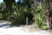 Site marker #3 in front of saw palmetto, sable palm and native shrubs on gray ground with little grass.