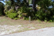 Site marker for #4 in front of saw palmetto, pine and native shrubs on grassy ground.