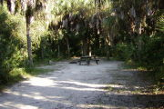 Long view of site with picnic table and grill in center back, trees around.
