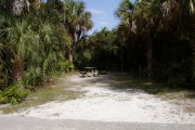 Picnic table center back on gray ground surrounded by palms