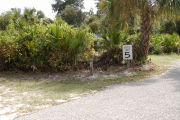 Site marker and speed limit sign next to paved road with palmetto behind.