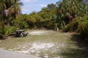 Picnic table on the left and grill center back surrounded by palms on grass.