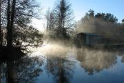 The sun highlights a morning fog rolling off the water at Lake Griffin State Park.