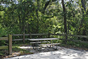 A fire ring, picnic table, and rustic wooden fencing, surrounded by dense green vegetation on campsite number two at Lake Griffin State Park