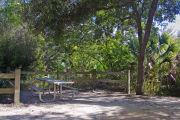 A fire ring, picnic table, and rustic wooden fencing, surrounded by dense green vegetation on campsite number five at Lake Griffin State Park