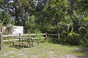 A picnic table, fire ring, and rustic wooden fencing are surrounded by a mixed oak hardwood and sabal palm forest on campsite number twenty-three at Lake Griffin State Park