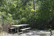 A picnic table, fire ring, and maroon buffer fencing is surrounded by dense green vegetation on campsite number twenty-nine at Lake Griffin State Park
