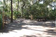 Lush vegetation of Spanish moss draped live oak, cedar, and palmetto surrounding an open campsite with a picnic table, fire ring, cloths line, and electrical hook-up stanchion.