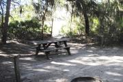 Lush vegetation of Spanish moss draped cedar, and palmetto surrounding an open campsite with a picnic table, fire ring and water spigot.