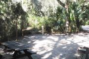 Lush vegetation of Spanish moss draped live oak, sable palm, cedar, and palmetto surrounding an open campsite with a picnic table, fire ring, cloths line, and electrical hook-up stanchion.