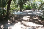 Lush vegetation of Spanish moss draped live oak, sable palm, cedar, and palmetto surrounding an open campsite with an accessible concrete parking pad, picnic table, and grill.