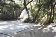 Accessible concrete parking pad and concrete walkway to the bath house with bathhouse in the background camouflaged by lush vegetation of live oaks, Spanish moss, cedar, and palmetto.