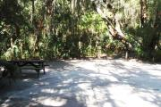 Lush vegetation of Spanish moss draped live oak, sable palm, cedar, and palmetto surrounding an open campsite with a picnic table, water spigot, and electrical hook-up stanchion.