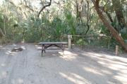 Lush vegetation of Spanish moss draped live oak, sable palm, cedar, and palmetto surrounding an open campsite with a picnic table, fire ring, water spigot, and electrical hook-up stanchion.