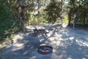 Lush vegetation of Spanish moss draped live oak, sable palm, cedar, and palmetto surrounding an open campsite with a picnic table, fire ring, cloths line, water spigot, and electrical hook-up stanchion.