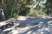 Lush vegetation of Spanish moss draped live oak, sable palm, cedar, and palmetto shading an open campsite with a picnic table, fire ring, cloths line, water spigot, and electrical hook-up stanchion.