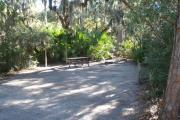 Lush vegetation of Spanish moss draped live oak, red cedar, and palmetto surrounding an open campsite with a picnic table, fire ring, cloths line, and water spigot.