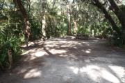 Lush vegetation of Spanish moss draped live oak, cedar, and palmetto surrounding an open campsite with a picnic table, fire ring, cloths line, water spigot, and electrical hook-up stanchion.