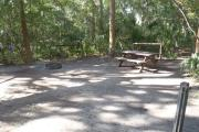 Lush vegetation of sable palm, cedar, and palmetto surrounding an open campsite with a picnic table, fire ring, and water spigot.