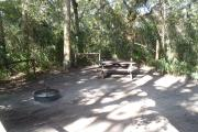 Lush vegetation of Spanish moss draped live oak, sable palm, cedar, and palmetto surrounding an open campsite with a picnic table, fire ring, and cloths line.