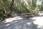 Lush vegetation of Spanish moss draped live oak and palmetto shading an open campsite with a picnic table, fire ring, and cloths line.
