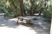 Lush vegetation of Spanish moss draped live oak, cedar, and palmetto shading an open campsite with a picnic table, fire ring, and water spigot.