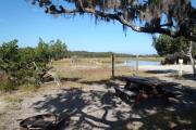 An expansive view of the salt marsh rushes, creeks, and a wooden dock from an open campsite with a picnic table, fire ring, clothes line, and electrical hook-up stanchion.