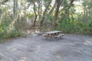 Lush vegetation of Spanish moss draped live oak and palmetto surrounding an open campsite with a picnic table and fire ring.