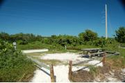 Photo: 003, View showing campsite through shoreline access in fence rails. A picnic table and fire ring is on the right side of site. Electric service is on the left side of the site. Green vegetation surrounds the campsite.