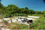 Photo: 003, View from shore line over fence rails showing picnic table and fire ring to the right. On the left side of site is the water and electrical service. Sea Grape and Palm trees are in the buffer zones between the sites.