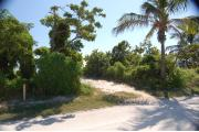Photo: 008, The shadow of a Palm tree crosses the entrance to the campsite. A Gumbo Limbo and Buttonwood tree are on the left.