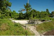 Photo: 009, Looking thru the shoreline access into the campsite, the fire ring and picnic table are to the front right. Sea Grape and Palm trees mark both sides of the campsite.